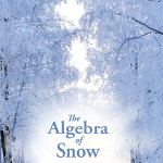cover for novel algebra of snow